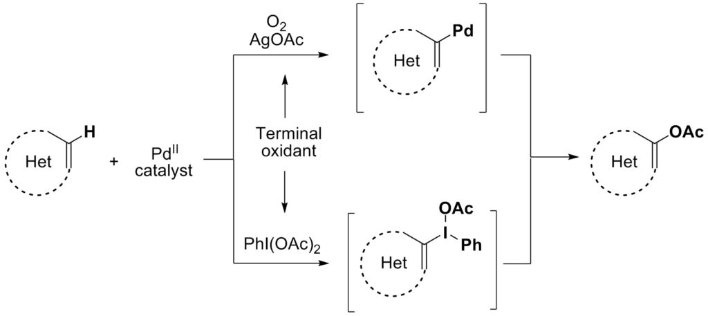 Transition-Metal-Catalyzed Acetoxylation of Heterocycles: All that Glitters is not Palladium