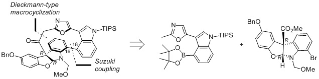 Stereoselective Synthesis of the Diazonamide A Macrocyclic Core